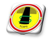 bedz_tops